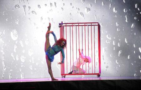 book a circus show, hire a circus show, book circus shows, hire circus shows, corporate circus shows, corporate circus show